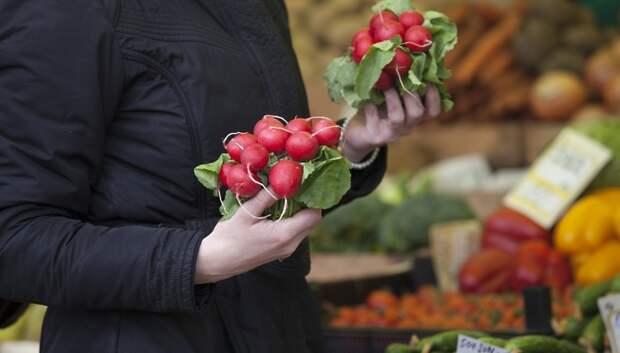 Временный сельскохозяйственный рынок организуют в Кузнечиках в 2019 году