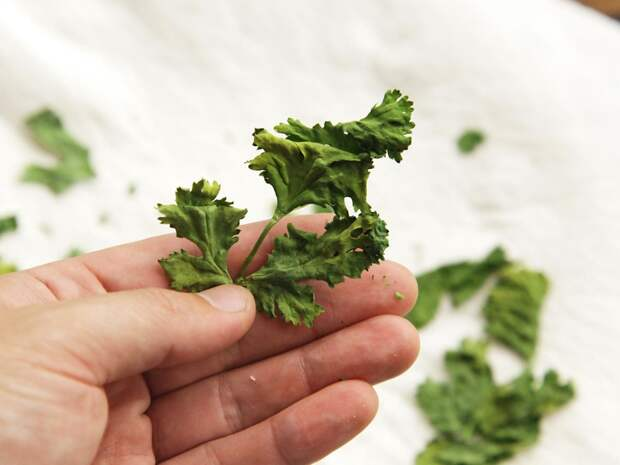 http://www.seriouseats.com/images/2015/03/20150317-drying-herbs-storage-9.jpg