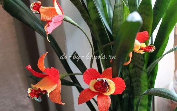 Орхидея из конфет своими руками