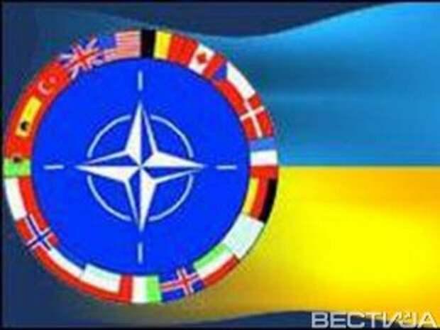 Если Украина попросит, то НАТО продаст ей оружие