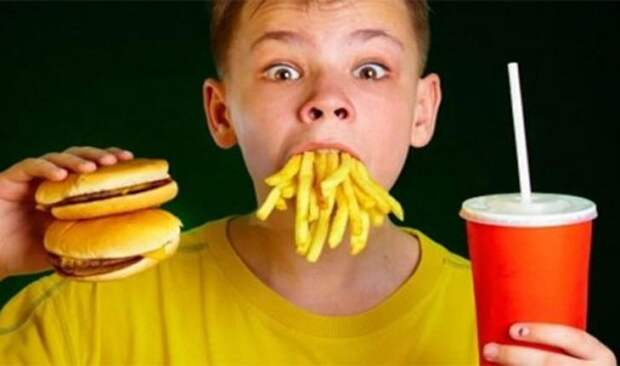 Табу в употреблении пищи со всего мира