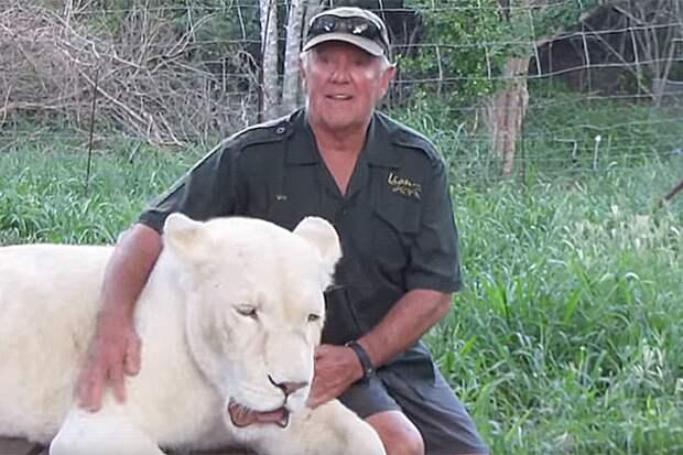 Защитника природы вовремя игры растерзали две его любимые белые львицы