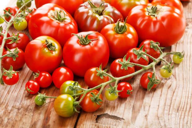 Йод поможет рассаде помидоров быть здоровой