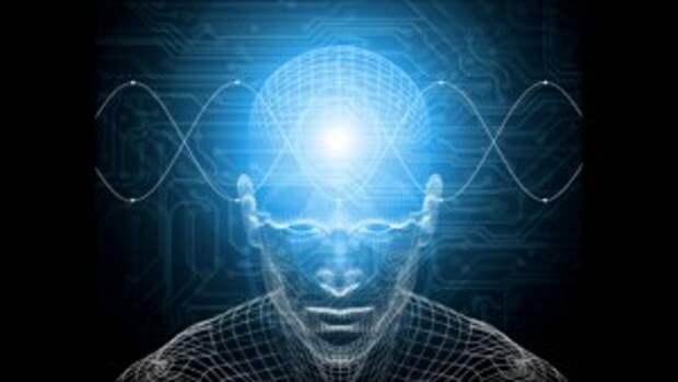 Мозг раскроет свои тайны