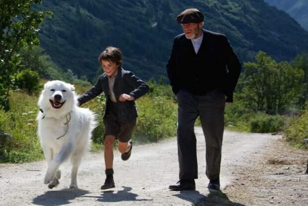 Кадр из фильма «Белль и Себастьян». / Фото: www.kinopoisk.ru