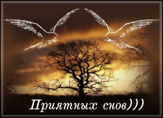 Душевные мелодии от Михалыча ко сну. Доброй ночи!