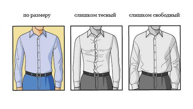 Как должна сидеть мужская рубашка BroDude.ru