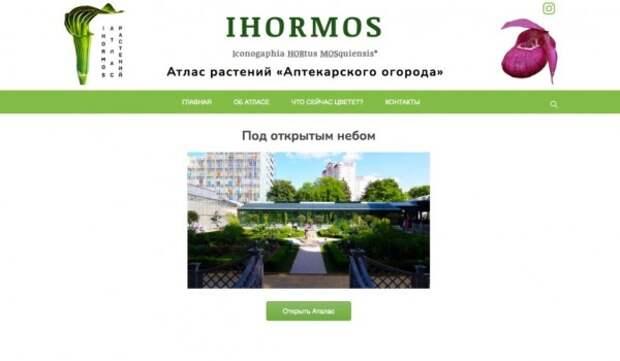 Электронный атлас растений «Аптекарского огорода» IHORMOS представили 15 апреля