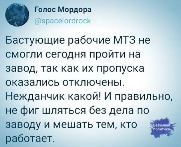 Жириновский поспорил на ящик пива, что белорусы встретят Новый год в составе РФ