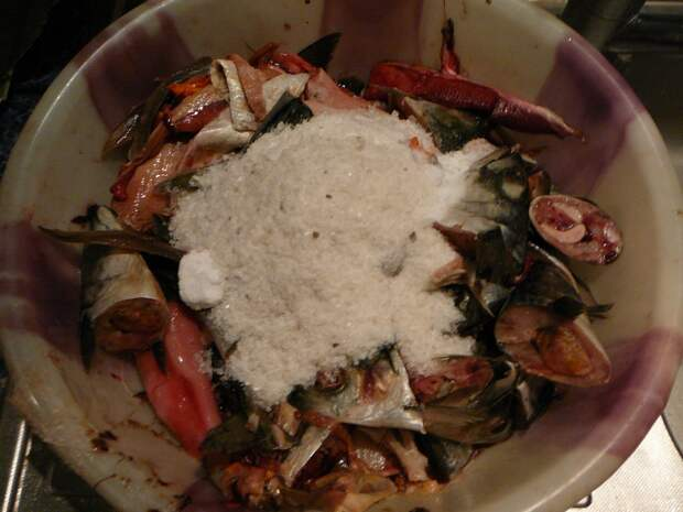 Рыбьи отходы для гарума можно копить, начиная с осени. Перед замораживанием, их нужно пересыпать крупной солью из расчета 150 грамм на кг рыбьих отходов. Гарум солью нельзя испортить – высокое содержание соли не препятствует ферментизации, а вот на сохранность гарума оказывает положительное действие.