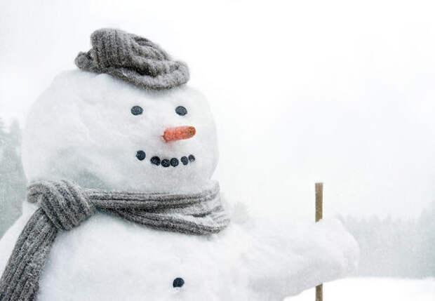 Смешно смотрится снеговик - пародия на хозяина участка