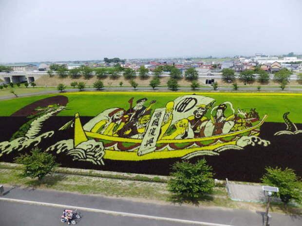 landart02 Необыкновенные картины на рисовых полях