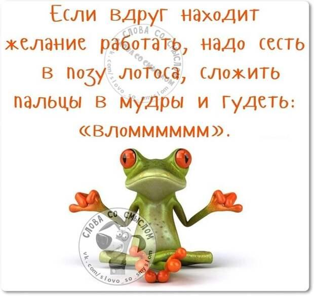 5672049_1447960866_frazki28 (604x569, 57Kb)