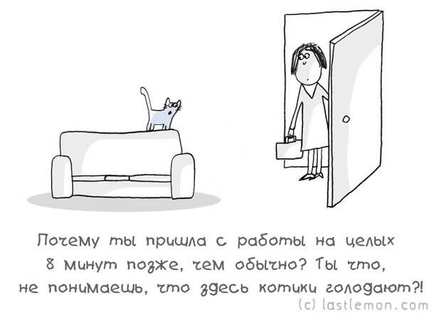 catsaask08