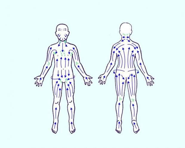Признаки того, что ваша лимфатическая система засорена
