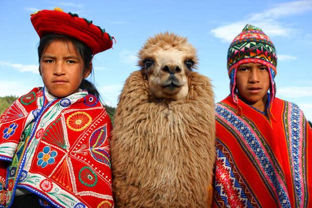 Дети позируют со своей ламой в Куско, Перу вокруг света, путешествия, фотография