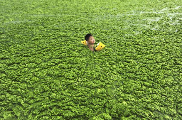 5. Мальчик плавает в