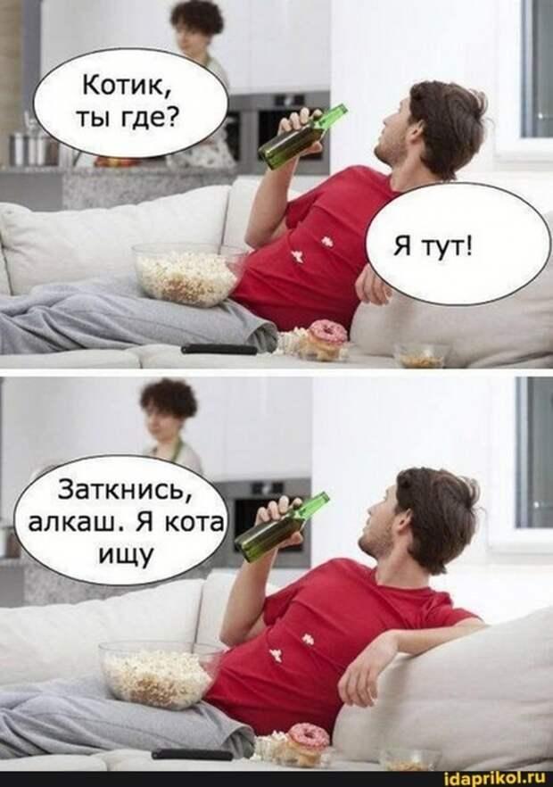 3085196_kotik (492x700, 197Kb)