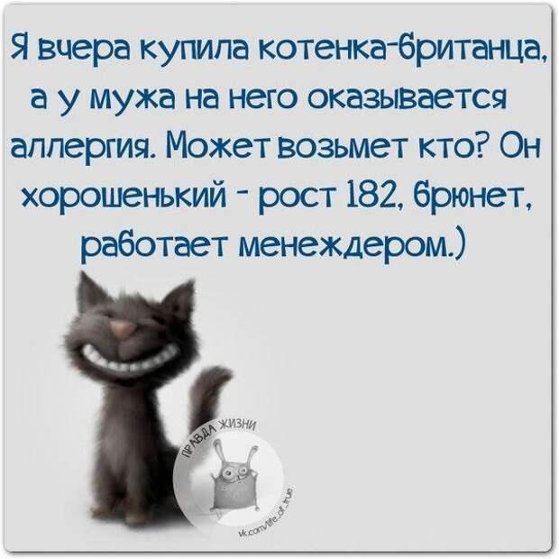 5672049_1447960862_frazki11 (604x604, 48Kb)