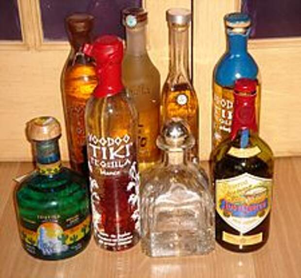 https://upload.wikimedia.org/wikipedia/commons/thumb/5/52/Tequilas.JPG/225px-Tequilas.JPG