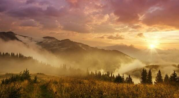 Википедия выбрала лучшие фото природы Украины