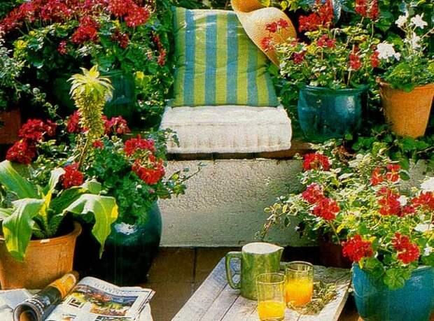 Как оставить цветы на время отпуска
