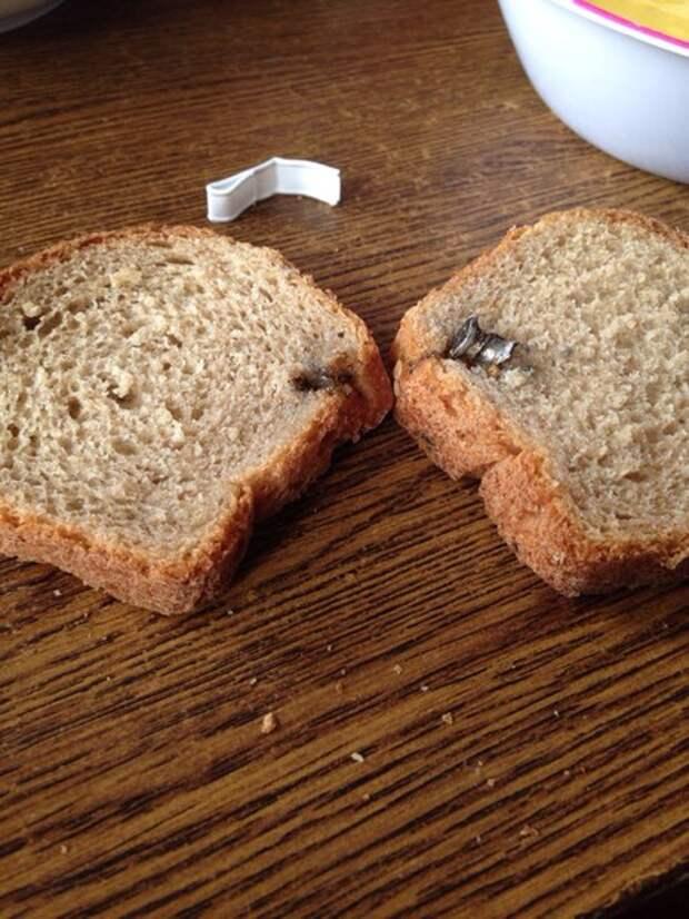 Крымчане обнаружили в хлебе «грязную осень» и «эхо войны» (фотофакт)