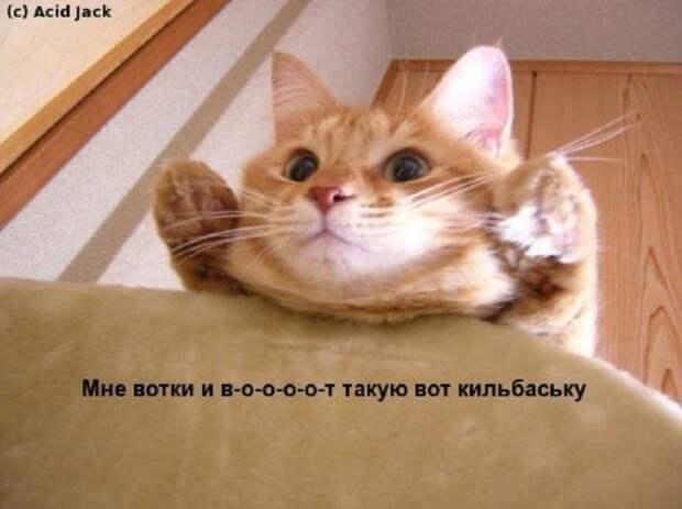 Мысли вслух :) №111213