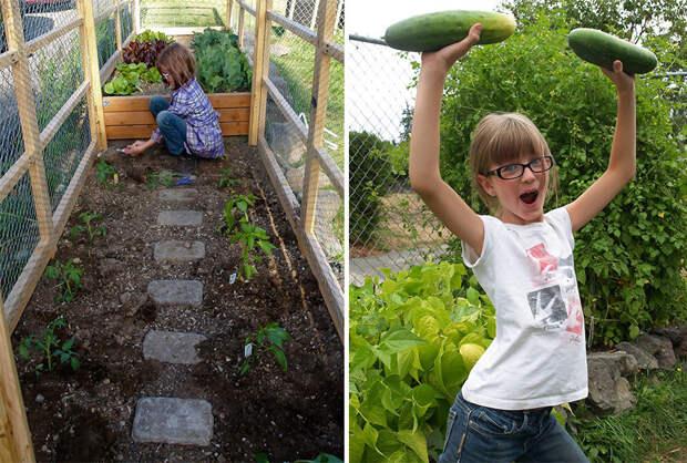 Девочка планирует вырастить 113 кг еды на своем огороде  бездомный, девочка, домик, помощь
