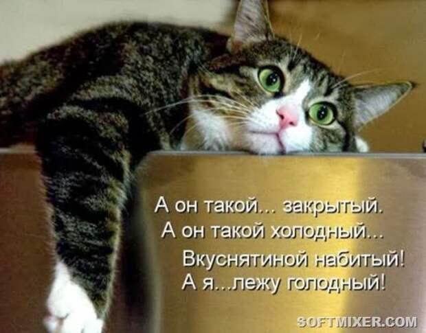 04197651ba2c9f81643edfe04ff_prev