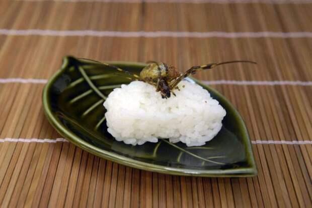 экзотическое суши 2