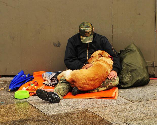 16. Бездомный с собакой  бездомный, любовь, собака