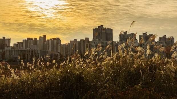 Большой жилой комплекс построят заТЦ«Рио» вРостове