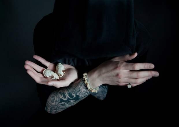 Насекомые как символы быстротечности жизни в фотографиях Инес Козик