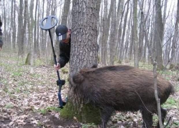 Забавные и прикольные картинки от Хахаду.ру (11 фото)