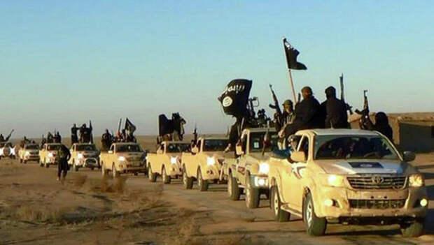 США заинтересовались, откуда у ИГ так много внедорожников Toyota