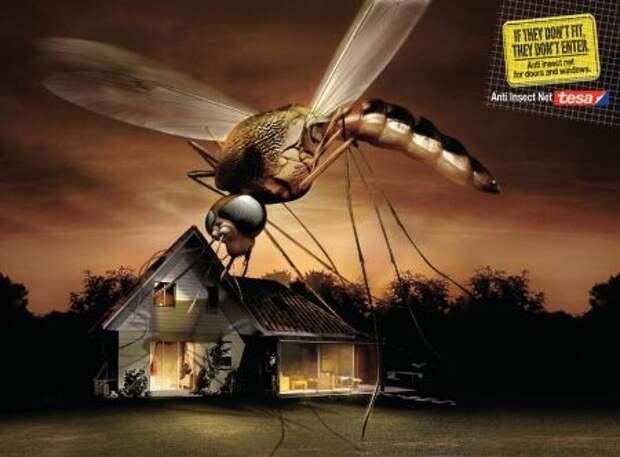 Tesa: комар носа не подточит!