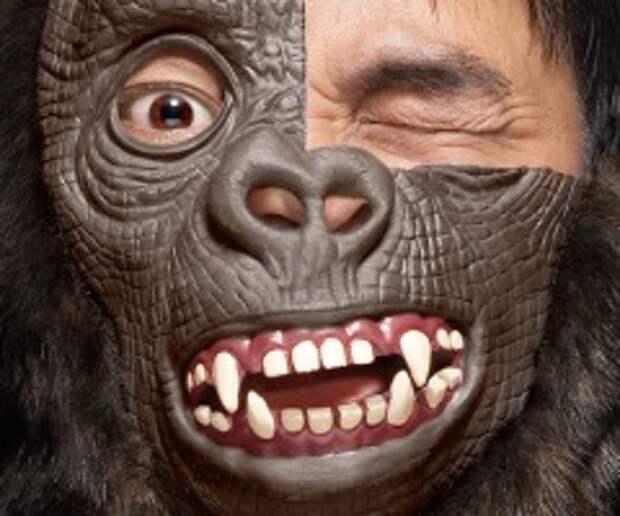 Таблетка превращает обезьяну в человека