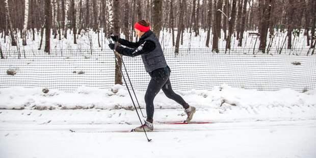 В Лианозовском лесопарке пройдут лыжные гонки