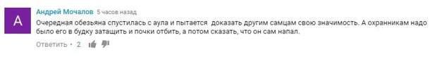В комментариях водителя конечно же осудили: ynews, авто, автохам, видео, интересное, скорая, фото