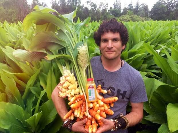 Как цветут и зреют некоторые известные продукты