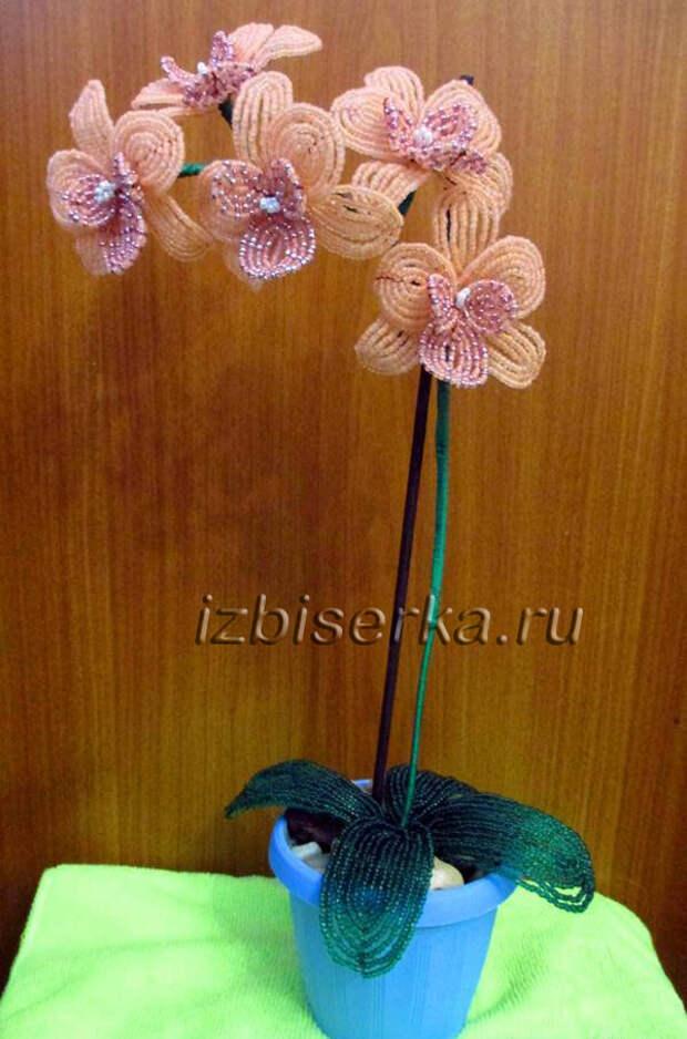 Орхидея из бисера мастер-класс
