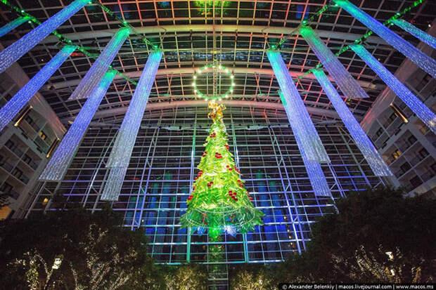Cамые красивые рождественские традиции Америки