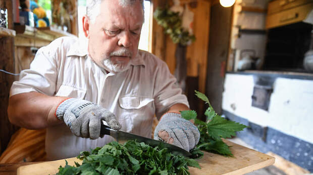 Сергей Ануфриев уверяет, что рецептов из крапивы — более 500