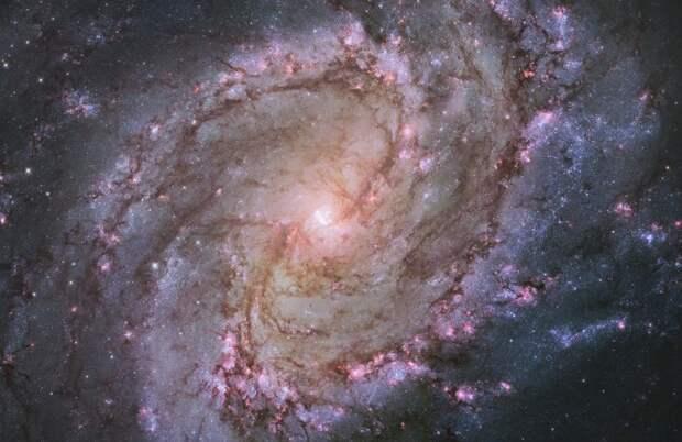 M83 или Южная Вертушка