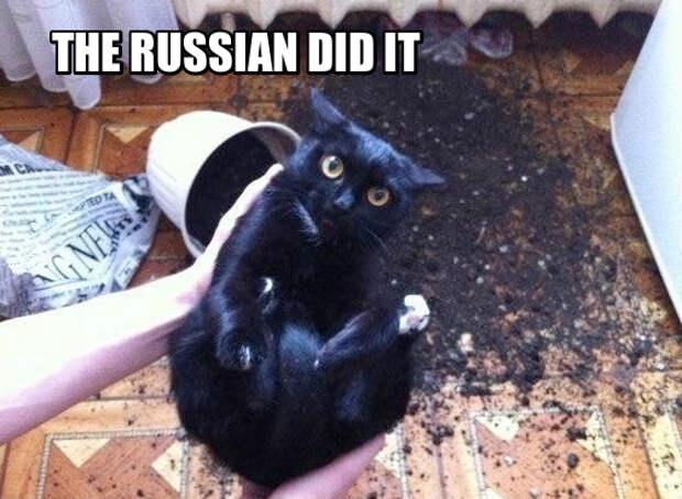 """Три простых слова, которые помогут выйти из любой ситуации: """"Russians Did It"""" (это сделали русские)"""