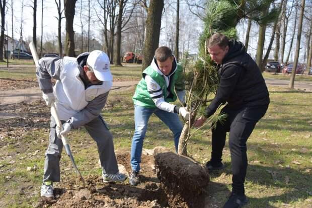 Субботник с раздельным сбором мусора прошел во Владимирском парке Балашихи