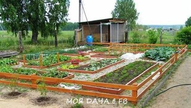 Идеальный огород своими руками