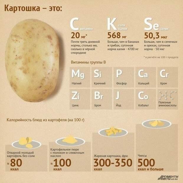 Вкусно и полезно. Картофель