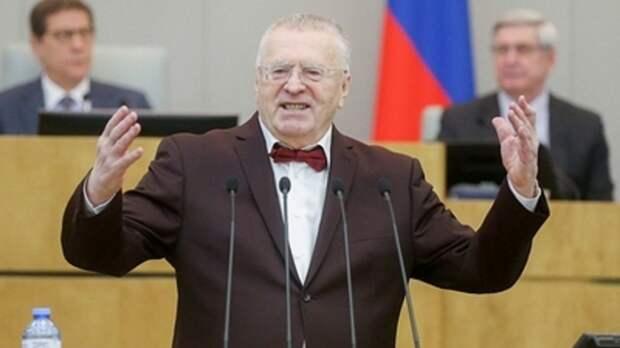 Жириновский предложил освободить чиновников от подачи налоговых деклараций: Все спрячут, кому надо